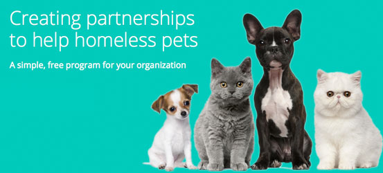 Creating partnerships to help homeless pets.